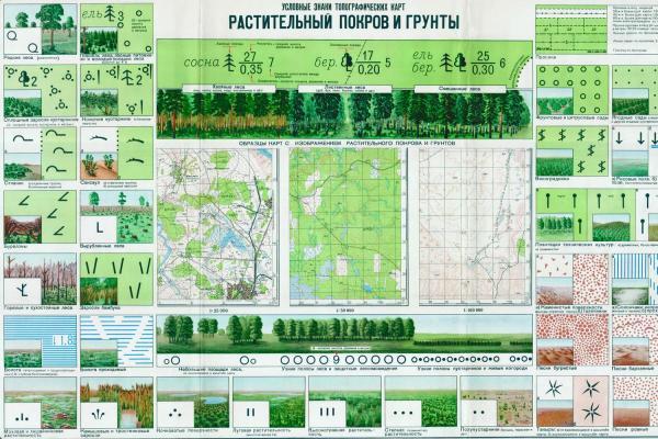 Условные знаки топографических карт - растительный покров и грунты.jpeg